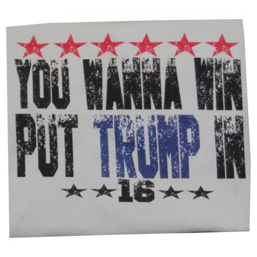 You Wanna Win Put Trump In 2